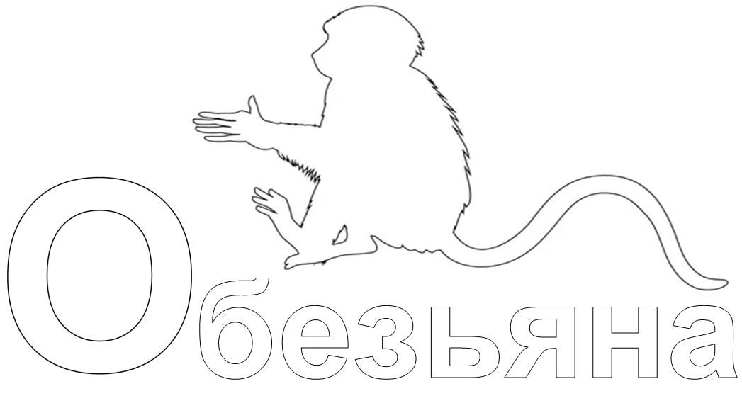 слова на букву О для детей в начале слова - обезьяна
