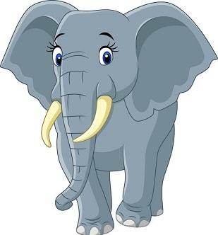 слон по английски произношение