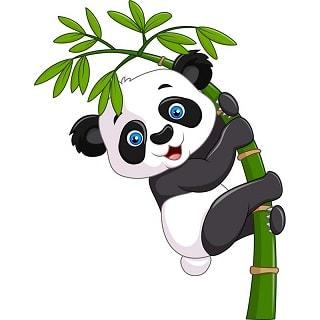 панда по английски произношение