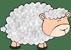 овца по английски произношение