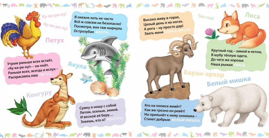 загадки про животных для детей 4-5 лет