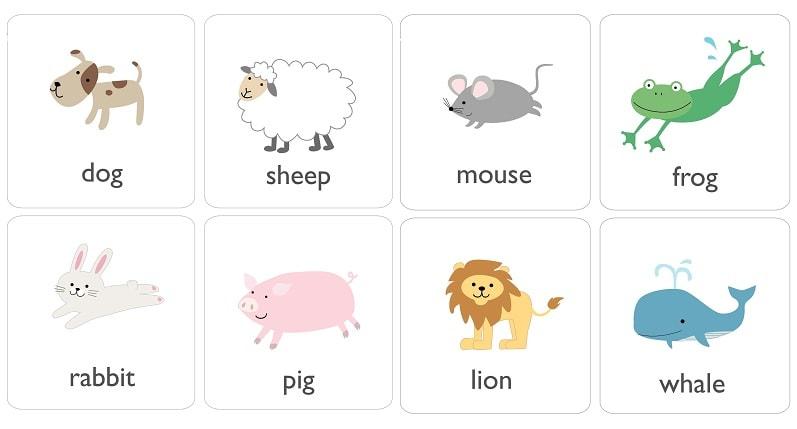 животные на английском для детей с произношением