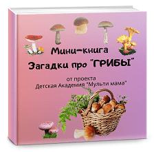 мини книга