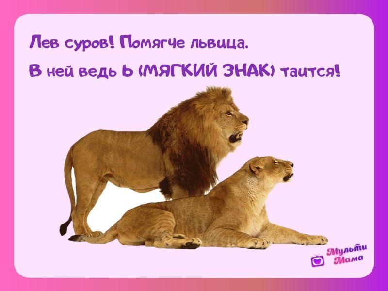 стихи про букву ь