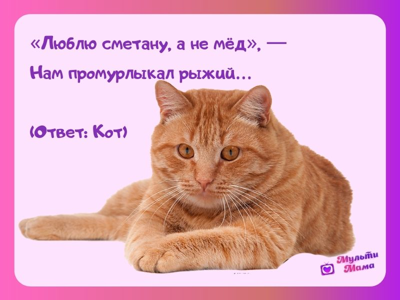 загадка про кошку для детей