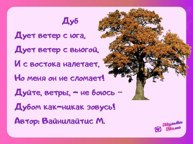стихи про деревья