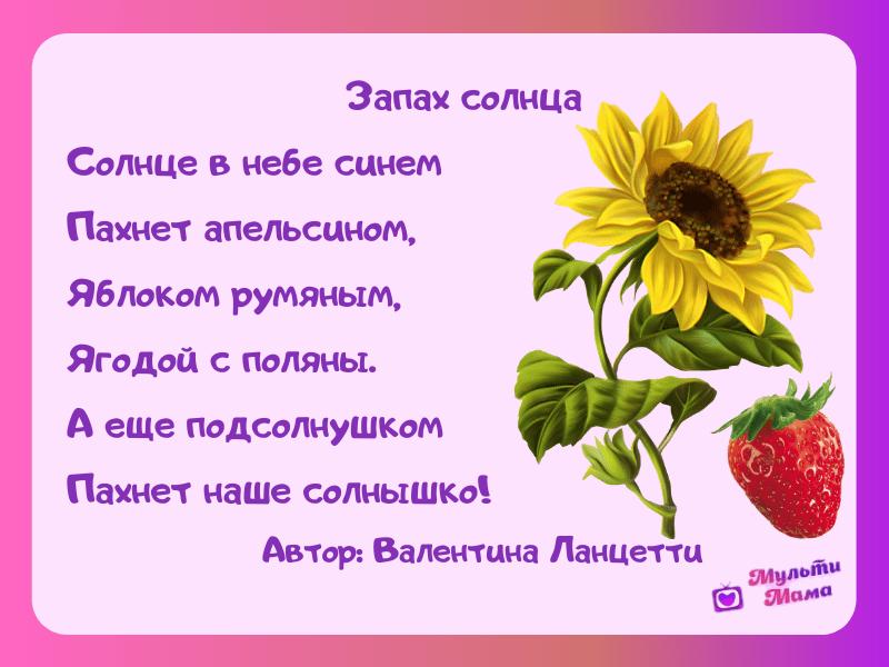 стихи про лето