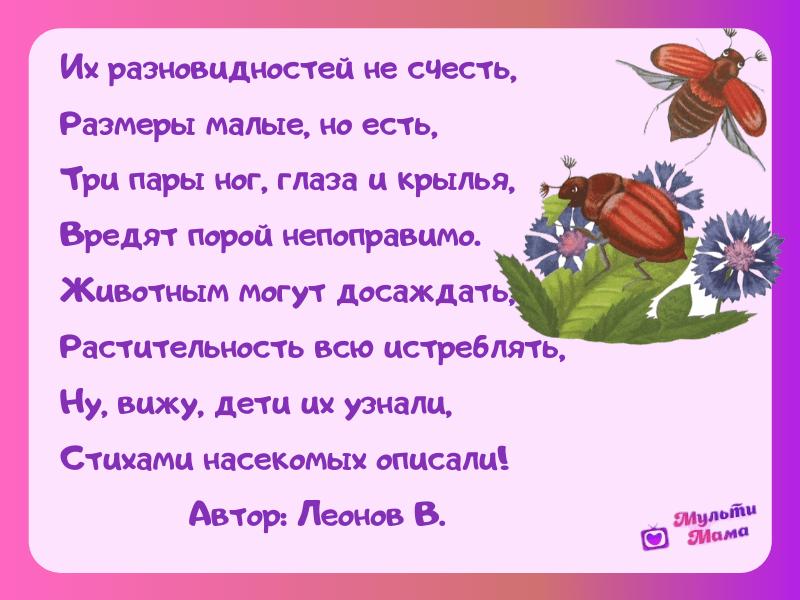 стихи про насекомых