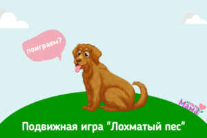 """Подвижная игра """"Лохматый пес"""""""