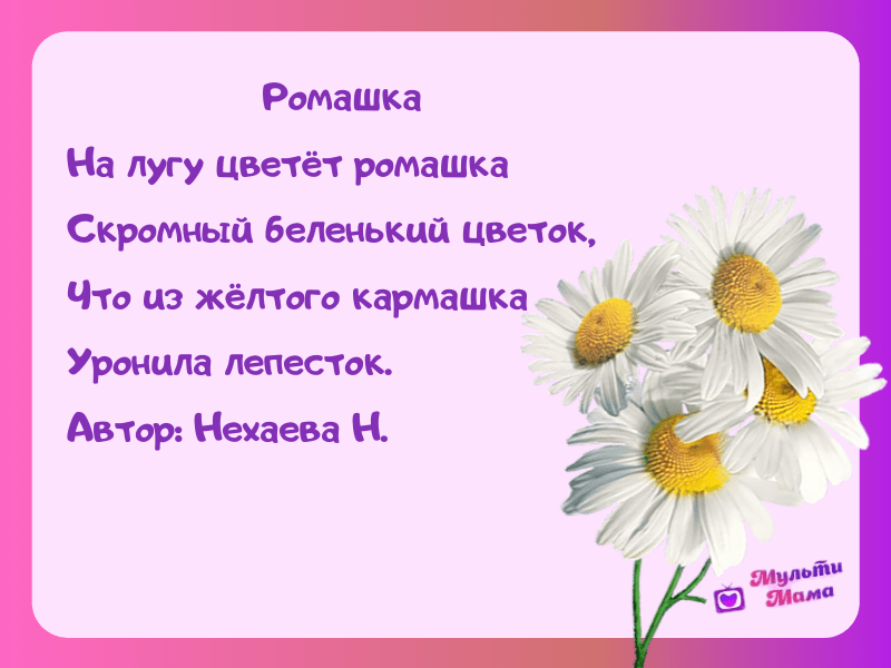 стихи про цветы