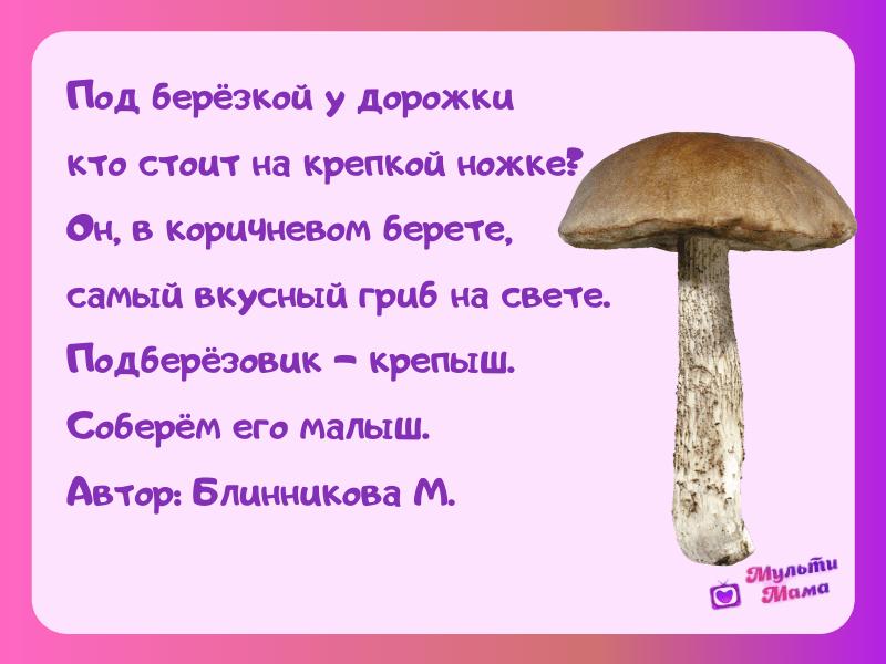 стихи про грибы