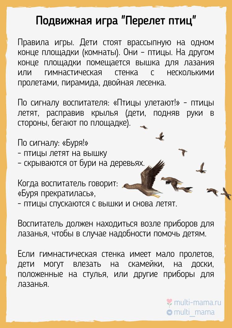 """Подвижная игра """"Перелет птиц"""""""