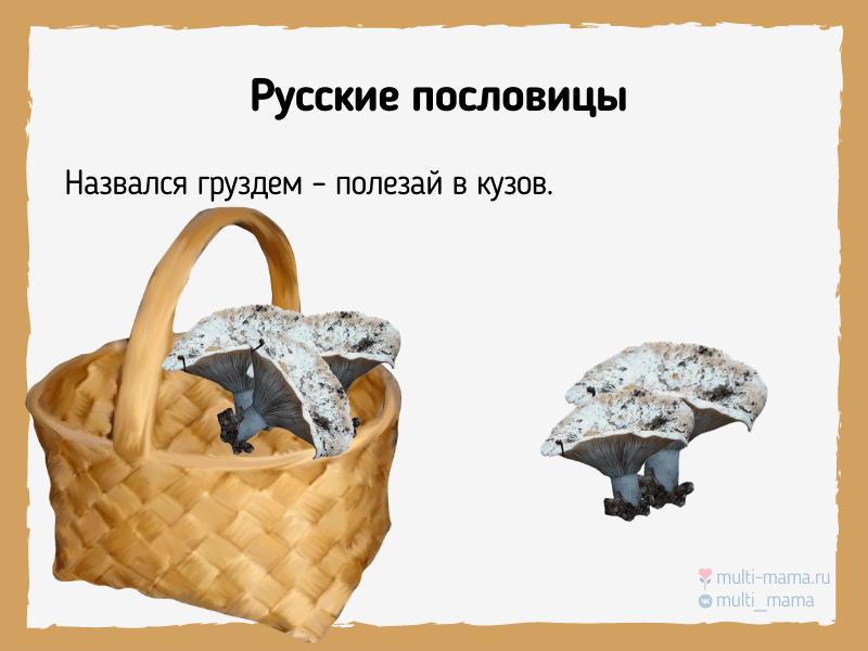 русские пословицы