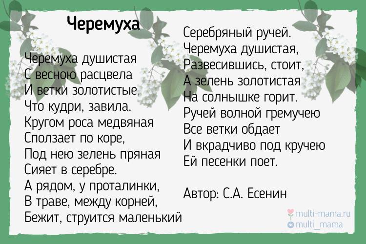 стихи есенина для детей